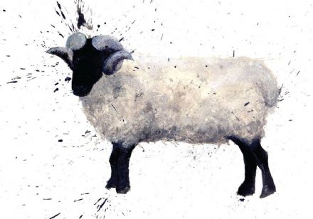 Clare Brownlow Blank Greeting Card 'Sheep Art'